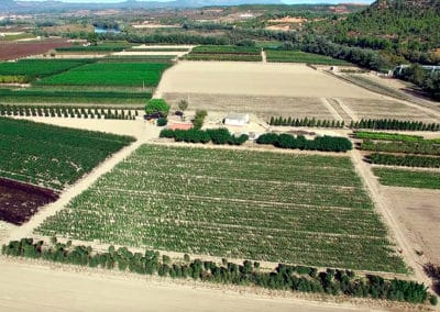 Aerea Viveros Ebro 07