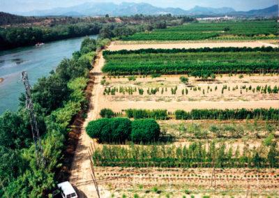 Aerea Viveros Ebro 08