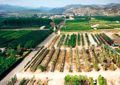 Aerea Viveros Ebro 09