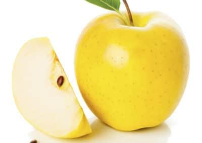 Malus-Domestica-Manzanos