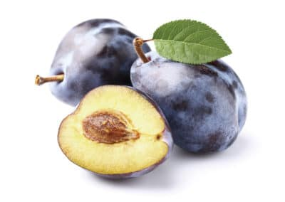 Prunus-Communis-Ciruelos
