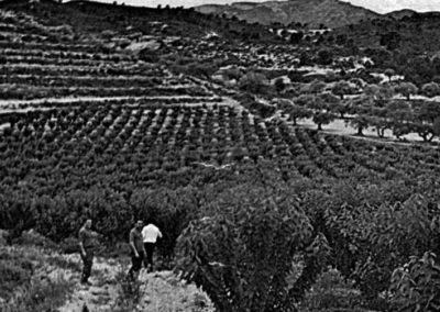 Historia Viveros Ebro 1